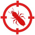 control de plagas de termitas en mataro